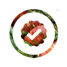 ico-responsabile